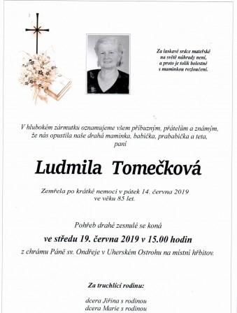 Tomeckova