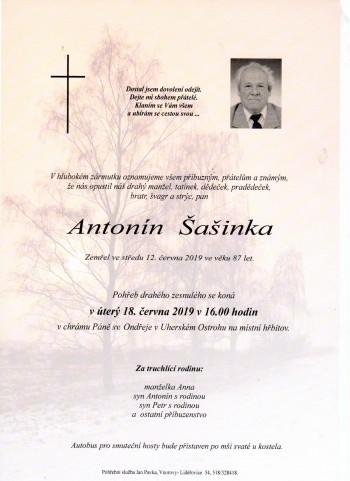 sasinka